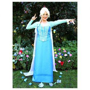 Fairy Wishes Children's Parties Elsa