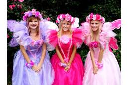 Fairy Wishes Children's Parties entertainers