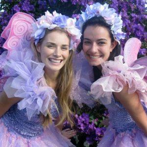 Fairy Crystal & Friends fairies