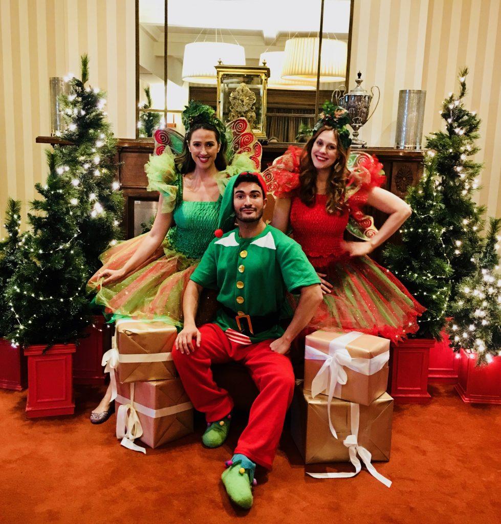 Fairy Crystal & Friends Christmas