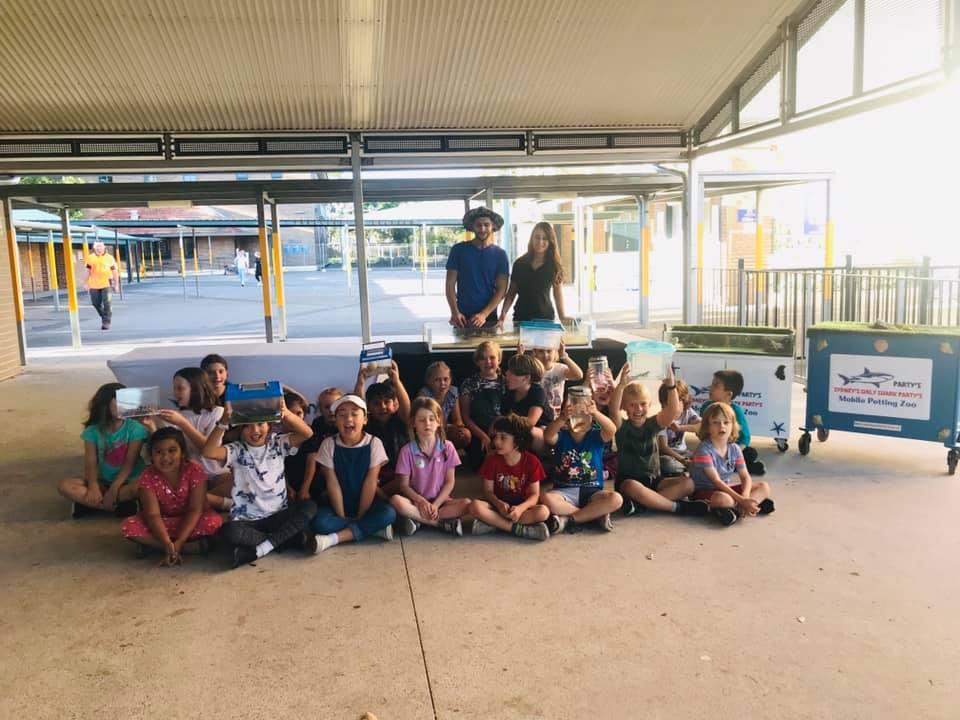 Shark Partys Sydney in school
