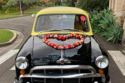 Bollywood Cars vehicle