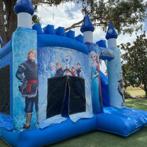 2Famous Jumping Castle Frozen castle
