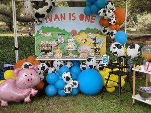 Dream A Little Dream farm theme