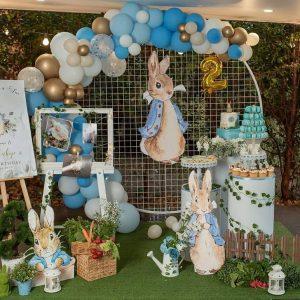 Party Brisbane Peter Rabbit