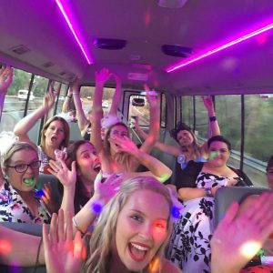 Party Shuttle party mode
