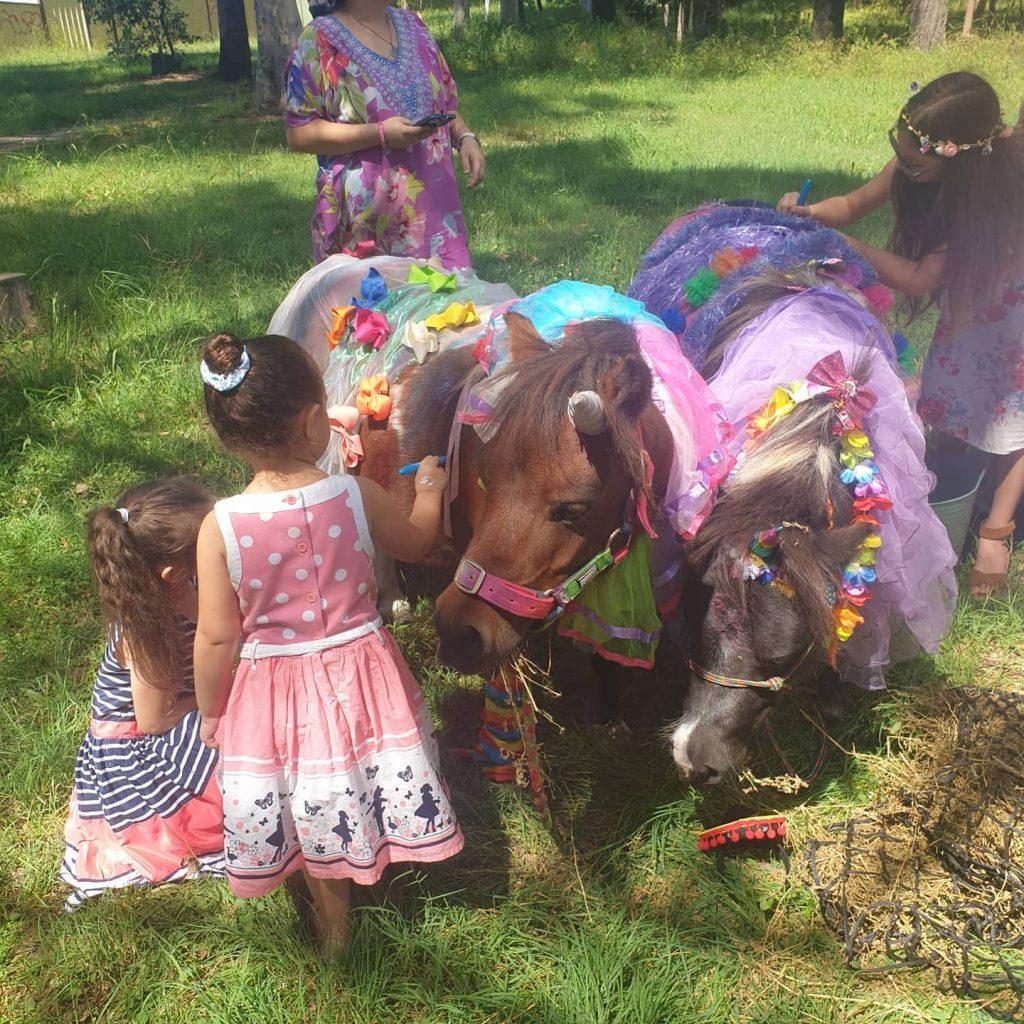 ponies and paints ponies