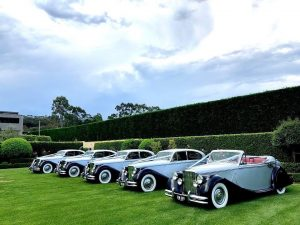 Royalty Wedding Cars lined up