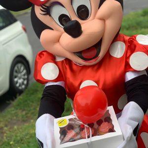 Soda Lane Minnie delivery