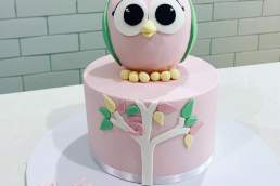 Sugar Princess Cakes owl cake