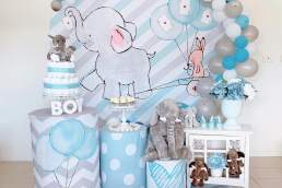 Theme Your Day baby shower