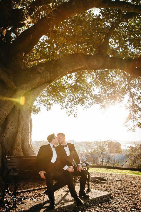 Katsu Nojiri Photography under the tree