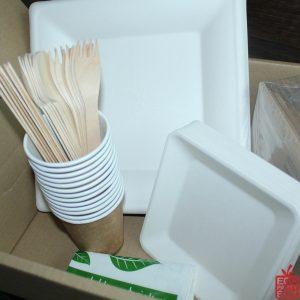 Eco Party Box sugarcane