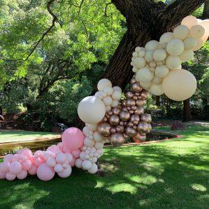 Party Frenzy wedding