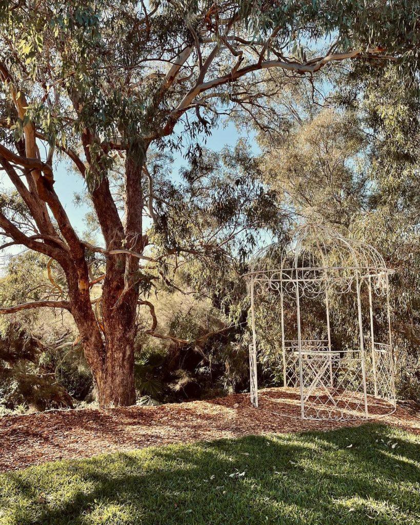 Rose Cottage Perth garden