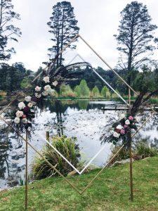 Sierra Blooms backdrop