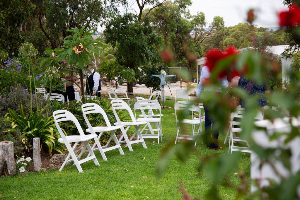 Rose Social garden