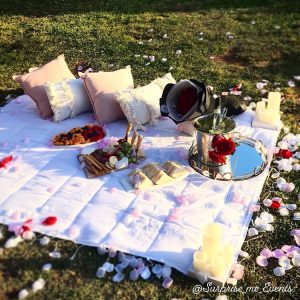 Surprise Me Events pcnic